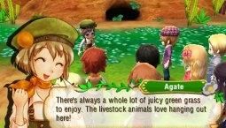 Story-Of-Seasons-(c)-2015-Marvelous,-Nintendo-(2)