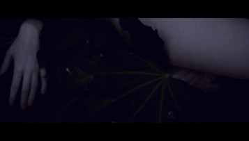 Night-Sea-Journey-(c)-2016-Herrmauser(7)