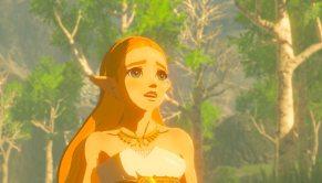 The-Legend-of-Zelda-Breath-of-the-Wild-(c)-2017-Nintendo-(3)