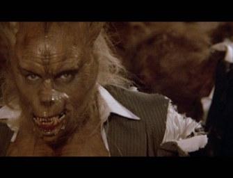 Stephen King: Der Werwolf von Tarker Mills Gewinnspiel