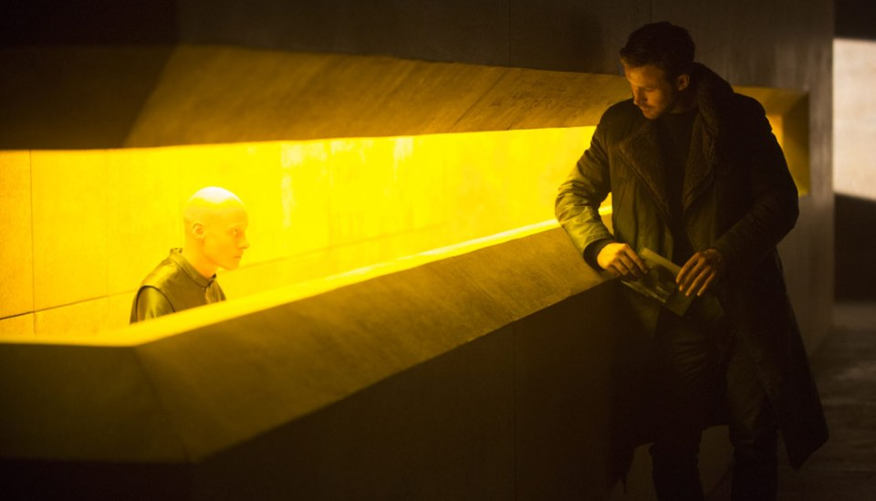 Blade-Runner-2049-(c)-2017-Sony-Pictures-Releasing-GmbH(6)