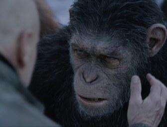 Planet der Affen: Survival Gewinnspiel