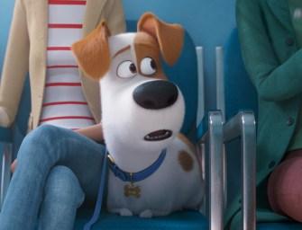 Trailer: The Secret Life of Pets 2
