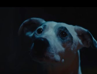 Clip des Tages:  The Chemical Brothers – We've Got To Try