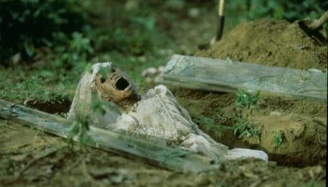 Die-Schlange-im-Regenbogen-(c)-1987,-2019-Koch-Films(2)