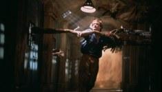 Die-Schlange-im-Regenbogen-(c)-1987,-2019-Koch-Films(3)