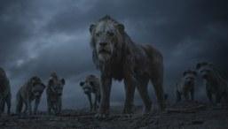 Der-König-der-Löwen-(c)-2019-Walt-Disney-Studios-Motion-Pictures-Austria(4)