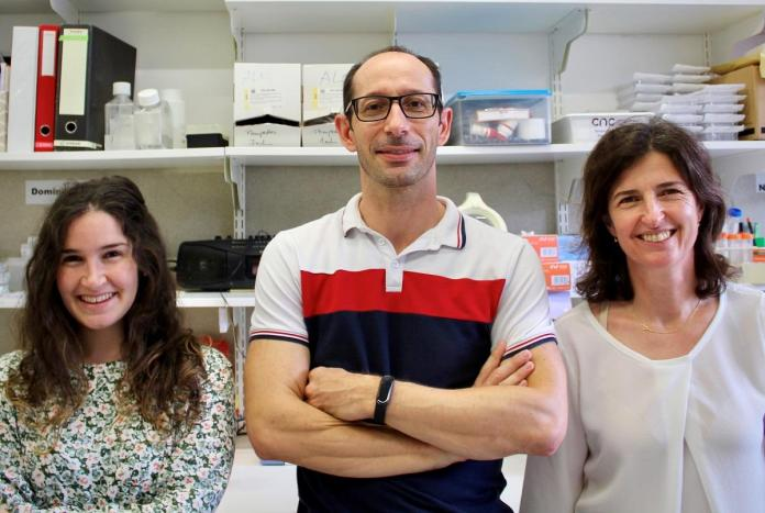 stress cronico cientistas
