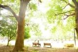 1596419 thum - 6/11 目黒のスタバで朝活やります! (月曜・お茶代のみ) 【東京】