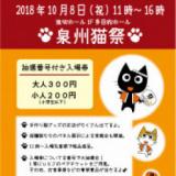 1603847 thum - 泉州猫祭