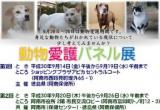 1603940 thum 1 - 動物愛護パネル展