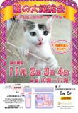 1606251 thum 1 - 猫の大譲渡会