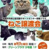 1606958 thum 1 - ねこ譲渡会
