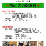1607804 thum - 猫と犬の譲渡会