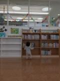 1610691 thum 1 - 代田図書館 1月の赤ちゃんおはなし会   世田谷区