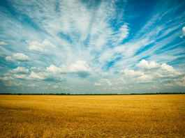 photo of grass field