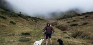 a man with his pets hiking on the foggy mountain