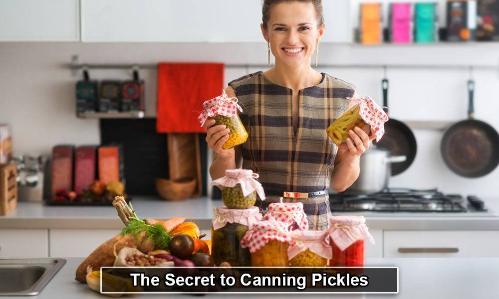 The Secret to Canning Pickles