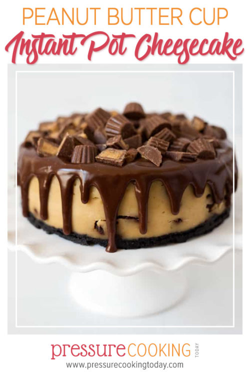Instant Pot Peanut Butter Cup Pressure Cooker Cheesecake | Pressure Cooking Today