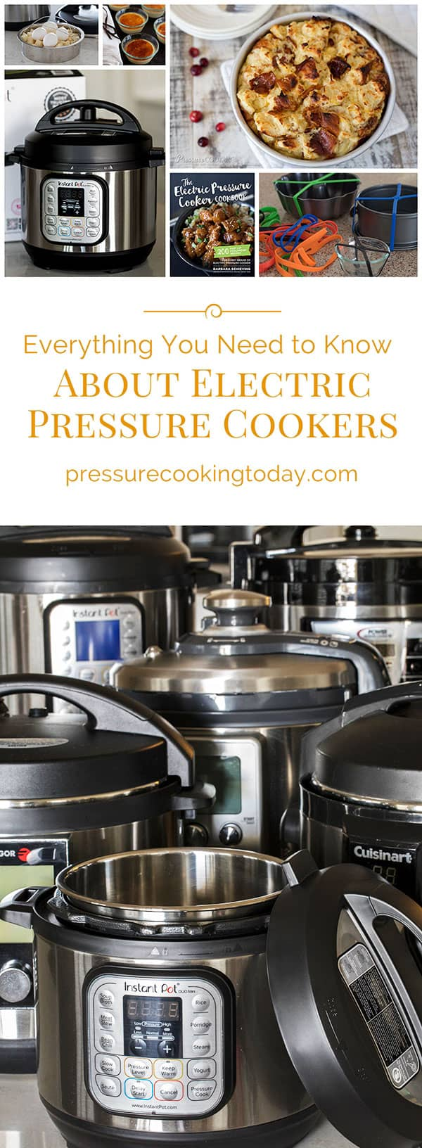 Want to learn how to use an Instant Pot or other multicooker? Here's everything you need to know about electric pressure cookers, plus reviews and recipes!
