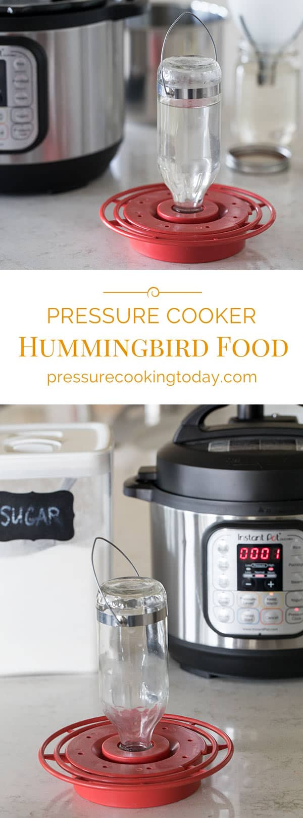 Hummingbird food is super easy to make, and making it in the pressure cooker is even easier.