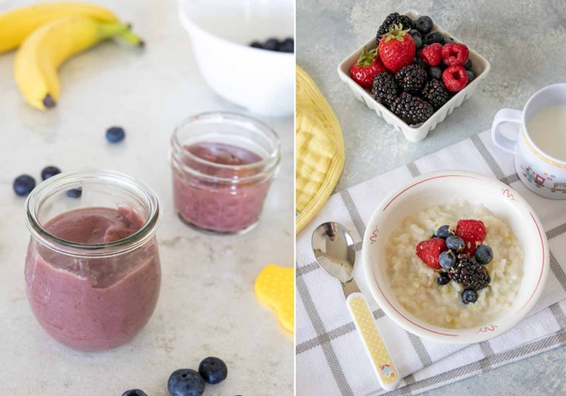 Blueberry Banana Puree and Lemon Berry Risotto from The Instant Pot Baby and Toddler Food Cookbook