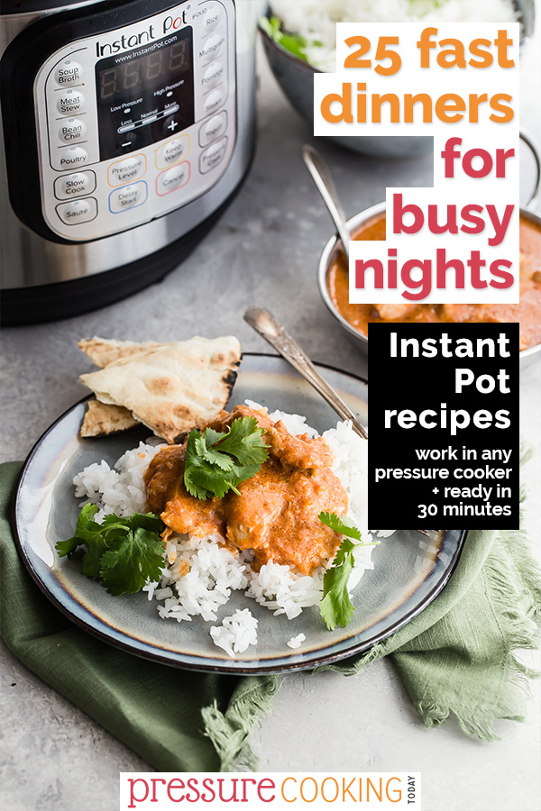 Pinterest Image 25 Fast Dinners for Busy Nights with Indian Butter Chicken in the background