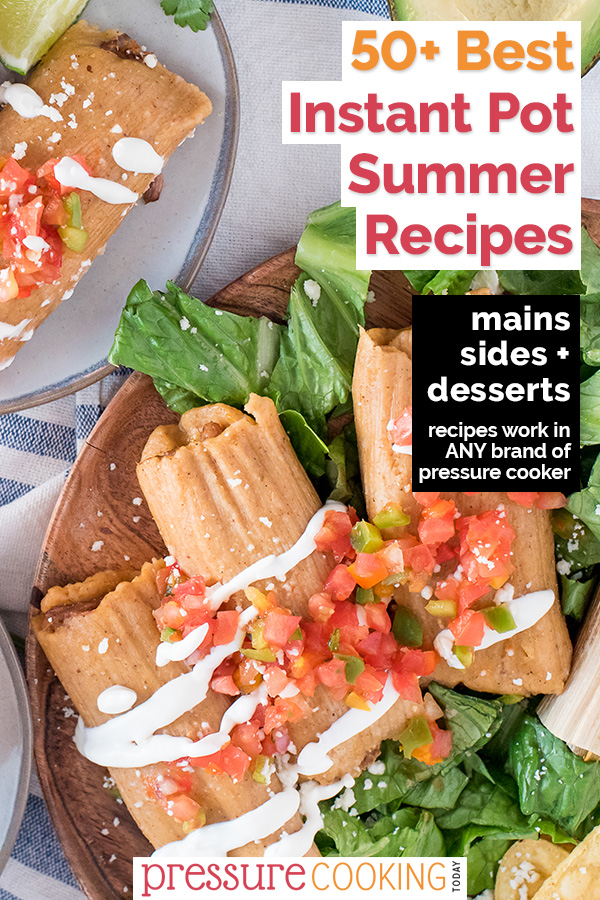 ☀️ Keep your house cool this summer and cook with your Instant Pot! Find a new favorite with one of these 80 Instant Pot Summer Recipe ideas for main dishes, side dishes, and desserts. via @PressureCook2da