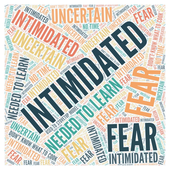 """a word cloud devised from people who took the Instant Pot survey about why they took time to finish it. Big bold words like """"Intimidated"""" and """"fear"""" and """"uncertain"""" are prominently displayed"""