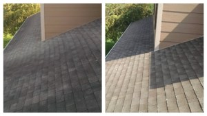 roof cleaning collage