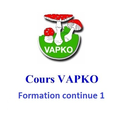 Cours Formation continue 1
