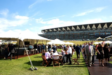 Enjoy a great view of the grandstand