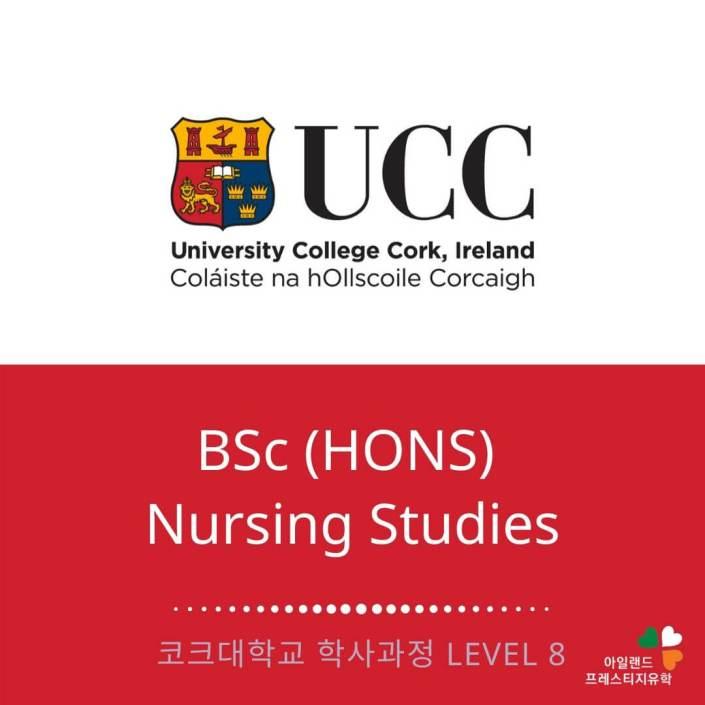 UCC 코크대학교-간호사학위과정-학사탑업과정-아일랜드유학 (1)