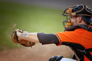 Catcher for Moncton Fisher Cats