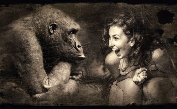 Onlooking smirking Ape and woman laughing
