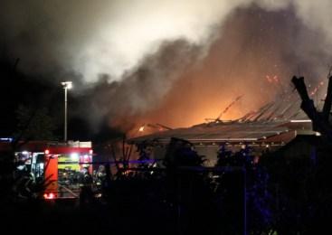 Na piščančji farmi v požaru zgorelo 15.000 piščancev