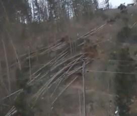 VIDEO: Ko veter drevje podira kot za šalo!