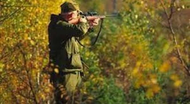 Novogoriški policisti obravnavajo kaznivo dejanje nezakonitega lova