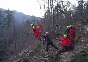 V nesreči pri delu v gozdu  hudo poškodovan 62-letni moški