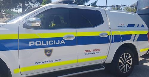 Kronika celjskih policistov