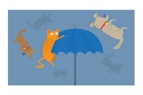 """It's raining Cats and dogs"" (French equivalent : Il pleut des cordes = It's raining ropes)"