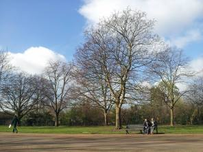 Kensington Garden 3