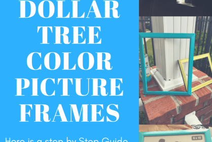 DIY DOLLAR TREE COLOR PICTURE FRAMES