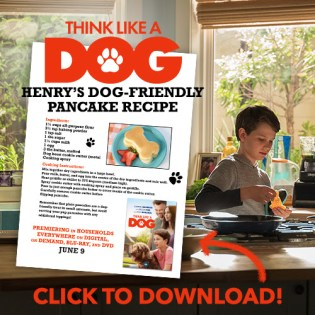 Think Like A Dog Pancake Recipe