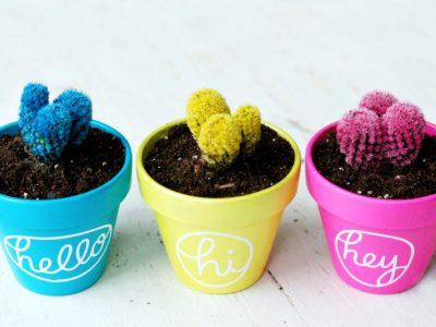 DIY Hello Cactus Planters