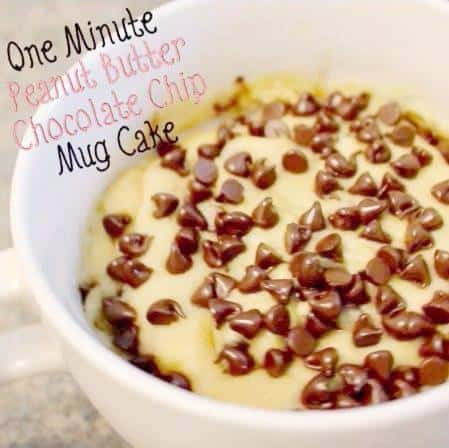 One Minute Peanut Butter Chocolate Chip Mug Cake