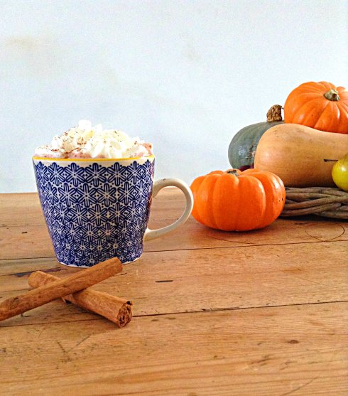 pumpkin-spice-hot-chocolate