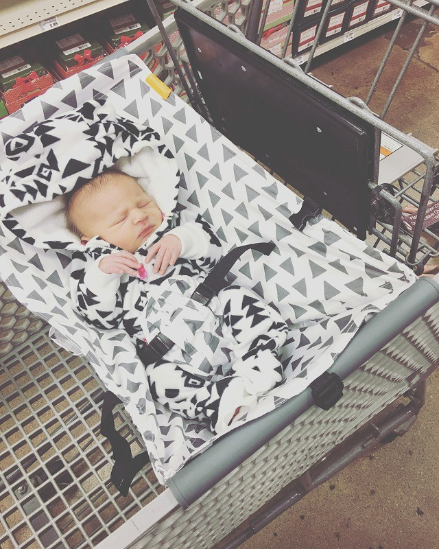 Binxy Baby Shopping Cart Hammock