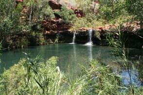 Waterfalls, fish spa, lush greens, paradise