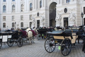 Carriages near Hofburg